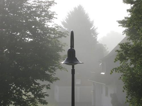Nebel im Osten
